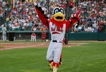 See the RedHawks with the Knights!