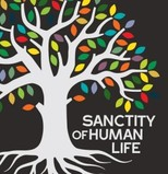 Sanctity of Human Life Sunday