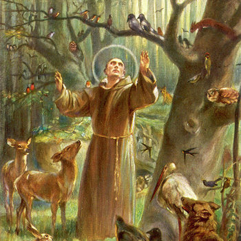 St Francis Blessing of the Animals