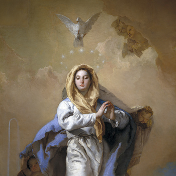 Solemnity of The Immaculate Of Mary / Solemnidad de la Inmaculada de María