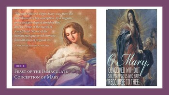 The Immaculate Conception of the Blessed Virgin Mary-Holy Day of Obligation