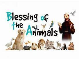 Blessing of the Animals - October 4 on Feast of St. Francis