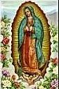 Our Lady of Guadalupe bilingual Mass