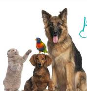Blessing of the Animals Oct. 5th
