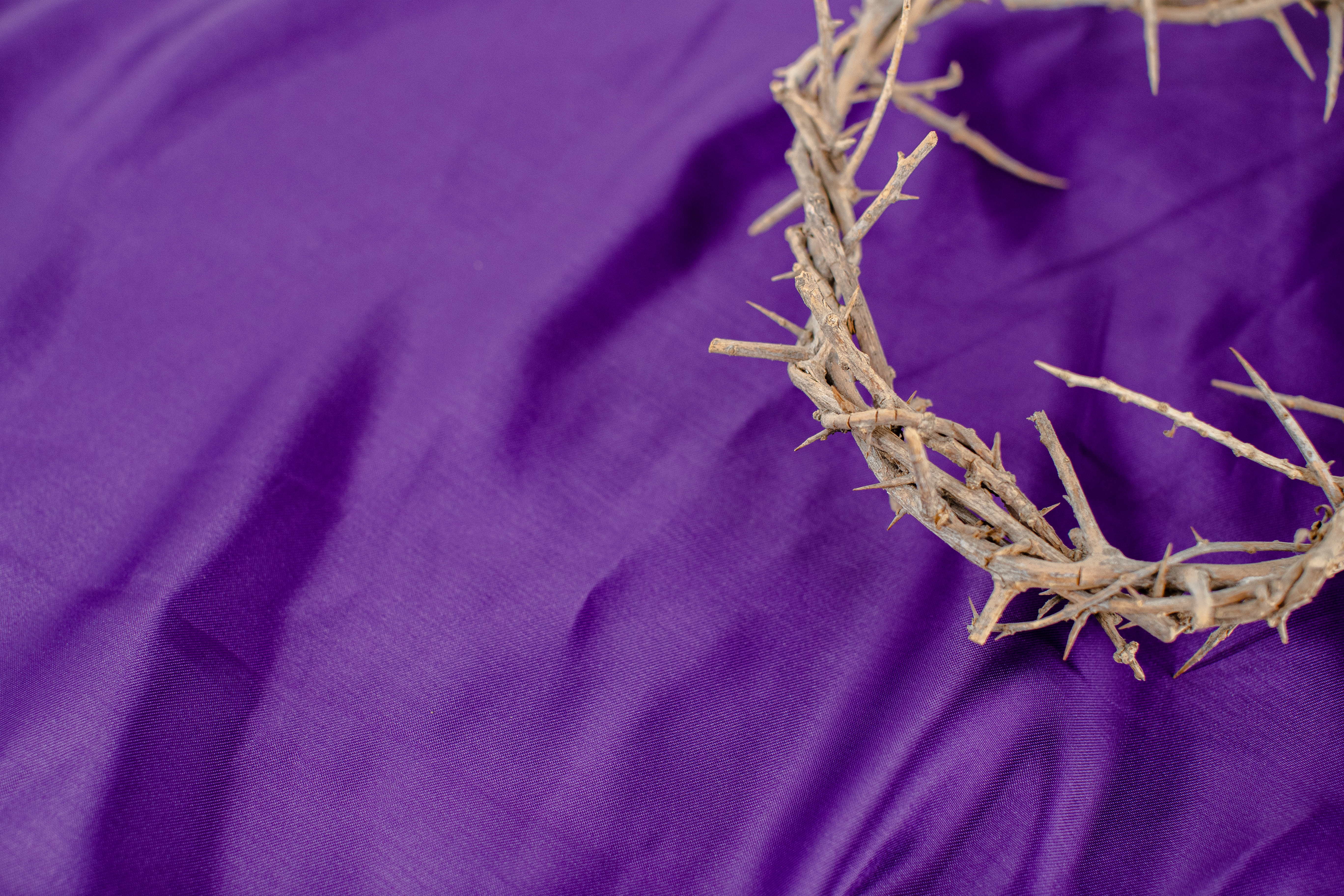 This Lent at St. Theresa