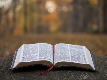 In Person Bible Study Returning