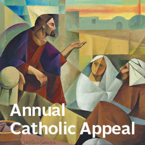 Annual Catholic Appeal July Update