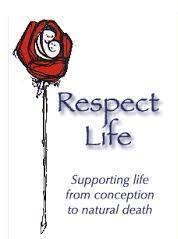 Respect Life from conception until natural death