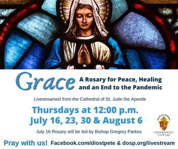 Pray a Rosary with Bishop Parkes