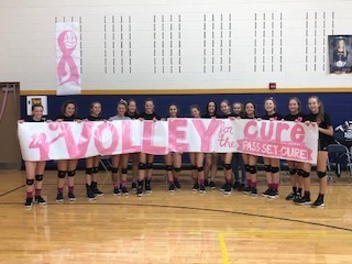 Volley For the Cure Support!