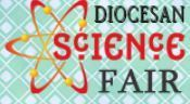 SJS Junior High Students Place in Diocesan Science Fair