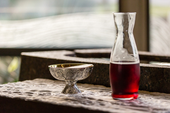 Training Session for Communion to Sick