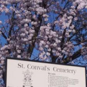 ST. CONVAL'S CEMETERY Mass