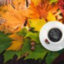 """Fall Festival """"Coffee And"""""""