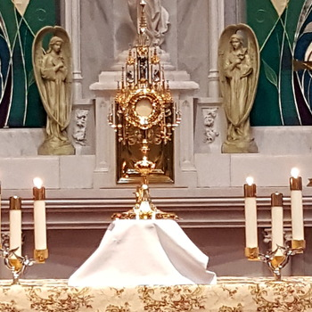 Adoration & Benediction (CANCELED)