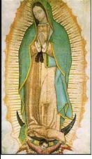 Our Lady of Guadalupe Masses