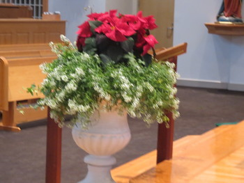 Day after Christmas Masses