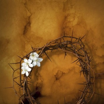 The Easter Triduum with Dan Schutte