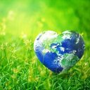 TAKE ACTION WITH EARTH MINISTRY/WASHINGTON INTERFAITH POWER AND LIGHT