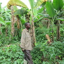 CATHOLIC RELIEF SERVICES: PROVIND FOOD AND FINANCIAL ASSISTANCE IN THE DRC