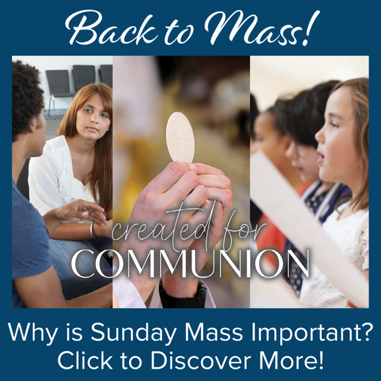 Click for More Information on Back to Mass!