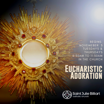 Daytime Adoration Begins,  Tuesday November 3