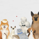 Pet Blessing 10/4 2:30pm