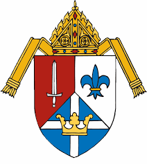 New cathedral rector, full-time vocations director among priest assignments