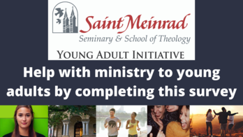 Young Adult Initiative Survey