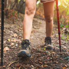 Join The St. Patrick School Hiking Club