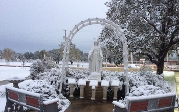 Snow on Feast of Immaculate Conception