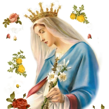 Holy Mass - Feast of The Immaculate Conception of the Blessed Virgin Mary