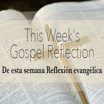 This Week's Gospel Reflection • Reflexión evangélica de esta semana