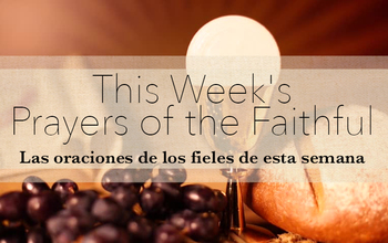 This week's Prayers of the Faithful • Las oraciones de los fieles de esta semana