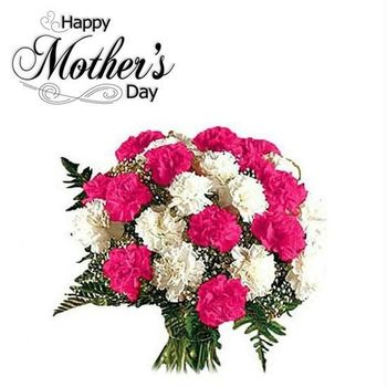 Mother's Day Carnation Sale