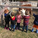 Kindergarten Readiness classes visit the Little Red Barn