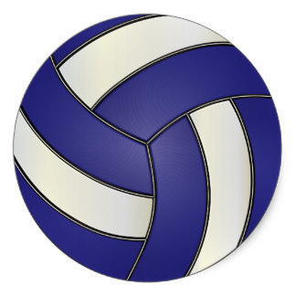 Volleyball at St. Dominic's in Northfield