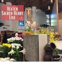 Watch Sacred Heart Live