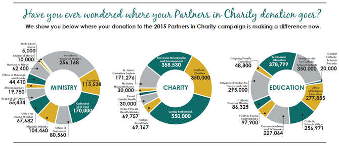 Pie Graphs of Partners in Charity Allocations
