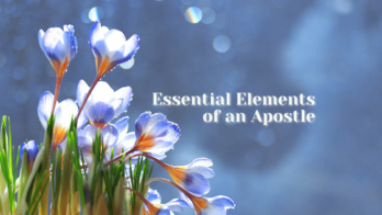 Essential Elements of an Apostle with Janet Lees