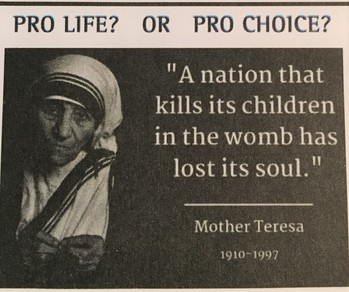Pro-Life Articles and Information