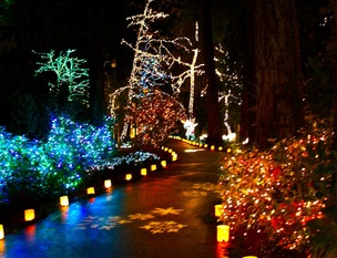The Grotto 30th Annual Festival of Lights