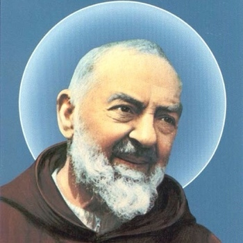 St. Padre Pio in the Archdiocese of Portland (Cathedral of the Immaculate Conception, Portland)