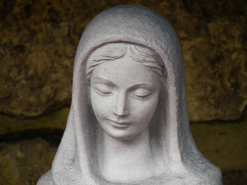 Homily for the Solemnity of the Assumption