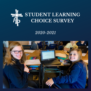 Student Learning Choice