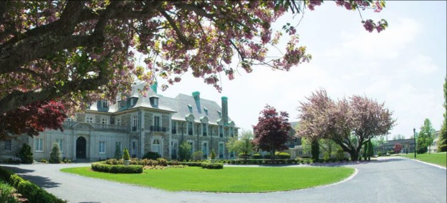 Aldrich Mansion trees in bloom CREDIT Immaculate Photo.PNG