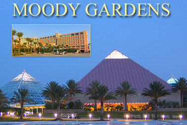 Moody gardens hotel reservations priests of the for Moody gardens hotel