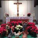 Holiday Mass Schedules