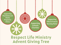 Advent Giving Tree Donations