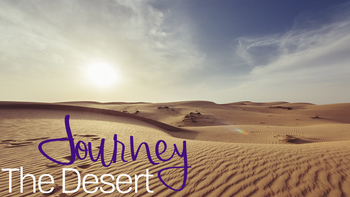 Journey: The Desert